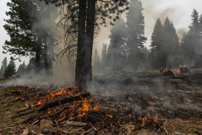 A small brush fires spreads ahead of a containment line near the Northwest edge of the Bootleg Fire on Friday, July 23, 2021, near Paisley, Ore. (AP Photo/Nathan Howard)