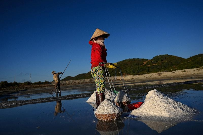 Salt farming in the Vietnamese town of Hon Khoi is punishing work, and incomes are unstable (AFP Photo/Manan VATSYAYANA)