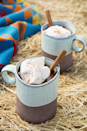 """<p>Hot cocoa—the sweetest winter treat of them all—gets a serious upgrade in this fun recipe. Cinnamon sticks add a spicy kick, bourbon adds fun, and dulce de leche adds a creamy consistency.</p><p><strong><a href=""""https://www.countryliving.com/food-drinks/recipes/a45476/spiced-mexican-hot-chocolate-recipe/"""" rel=""""nofollow noopener"""" target=""""_blank"""" data-ylk=""""slk:Get the recipe."""" class=""""link rapid-noclick-resp"""">Get the recipe.</a></strong> </p>"""