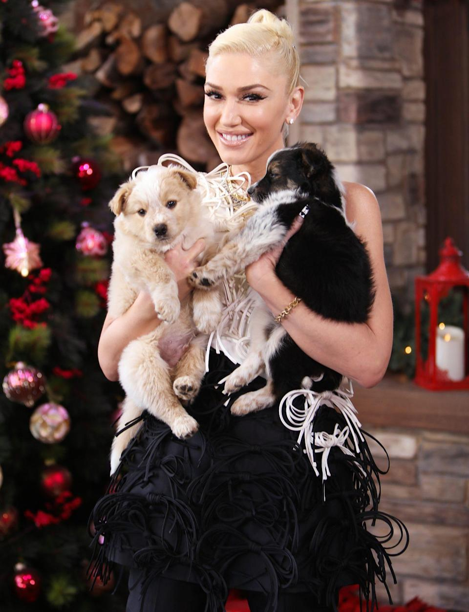 <p>Gwen Stefani hugs the sweetest little puppies while on the set of Hallmark Channel's <em>Home & Family</em> on Wednesday at Universal Studios Hollywood in Universal City, California.</p>