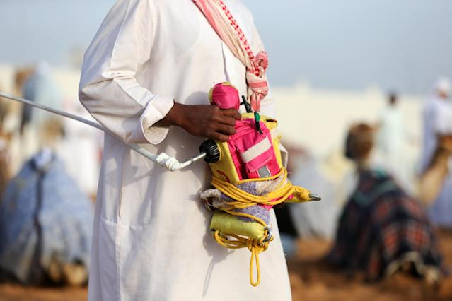 DUBAI, UNITED ARAB EMIRATES - APRIL 16: A handler holds a robotic jockey during Al Marmoom Heritage Festival at the Al Marmoom Camel Racetrack on April 16, 2014 in Dubai, United Arab Emirates. The festival promotes the traditional sport of camel racing within the region. (Photo by Francois Nel/Getty Images)