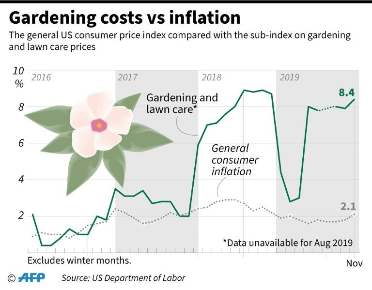 Prices for gardening and lawn care services have risen between three and five times as fast as overall consumer inflation since late 2018