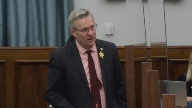 Liberal MLA Robert Henderson wants more details about how the province will the create the 300 new spaces promised in the throne speech earlier this year.
