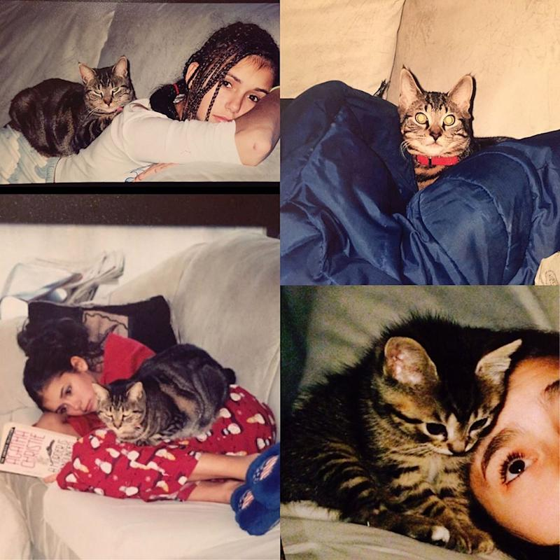 """Nina Dobrev Mourns the Death of Her 18-Year-Old Cat: """"My Heart Hurts"""""""