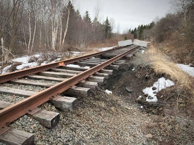 The Nova Scotia government is extending a subsidy to Cape Breton and Central Nova Scotia Railway for another year to keep the tracks in place across the island. (Tom Ayers/CBC - image credit)