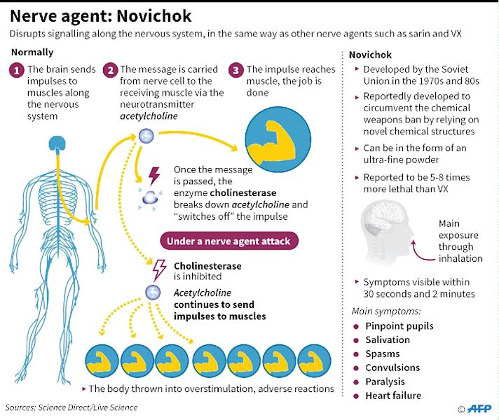 Factfile on the Soviet-era nerve agent Novichok (AFP Photo/John SAEKI)