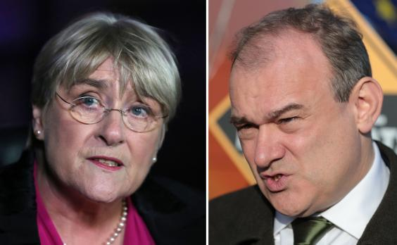 Sal Brinton and Ed Davey have taken on the co-leadership of the Liberal Democrats on an interim basis (PA)