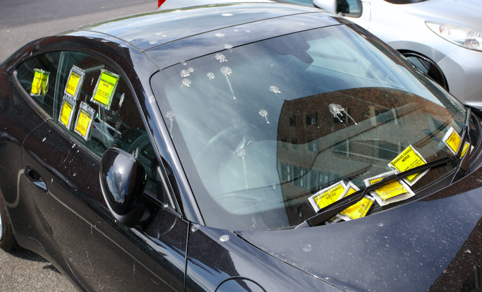 <em>Five parking tickets were placed under the windscreen wipers, four on the driver's window and one in the small rear driverside window (SWNS)</em>
