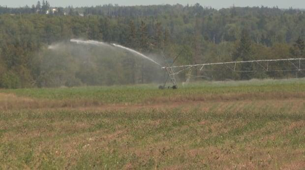 Farmers with large fields use irrigation equipment to supply water to dry fields.