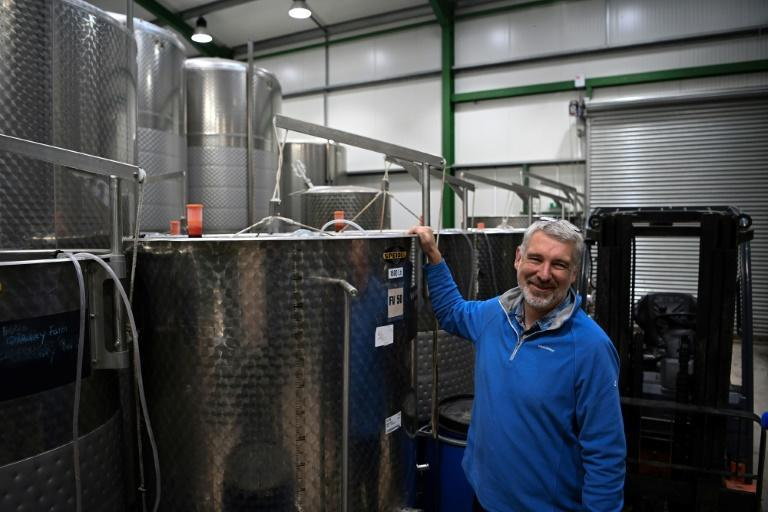 """It's not a wine to be taken too seriously, it's a fun drink, says Simon Day, posing at his vineyard in Ledbury, where the UK's first red primeur is being made"