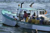 A sternman, right, baits a lobster trap while the captain maneuvers the boat while fishing, Monday, Sept. 21, 2020, off South Portland, Maine. Prices for consumers and wholesalers were low in the early part of the summer, but picked up in August to the point where they were about on par with a typical summer. (AP Photo/Robert F. Bukaty)