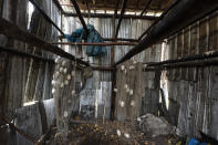 Unused salmon nets hang in the Stevens' empty smokehouse, which would normally be filled with salmon this time of year, on Wednesday, Sept. 15, 2021, in Stevens Village, Alaska. Two salmon species have all but disappeared from Alaska's Yukon River this year, prompting the state to shut down fishing in an effort to save them. (AP Photo/Nathan Howard)