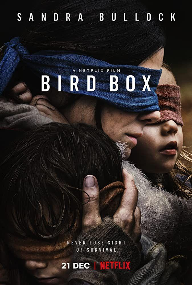 <p>While <em>Bird Box</em> wasn't able to do with sight what <em>A Quiet Place</em> did with sound (namely, make a scary movie that's actually scary), it's a concept film still worth the watch. Just please don't blindfold yourself and do stupid shit after you're done. </p>