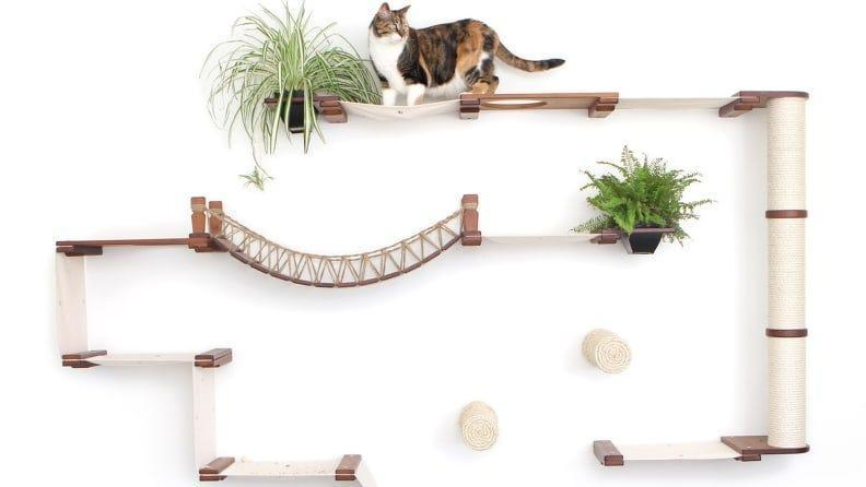 Create a crazy maze on your wall to keep your cats entertained.