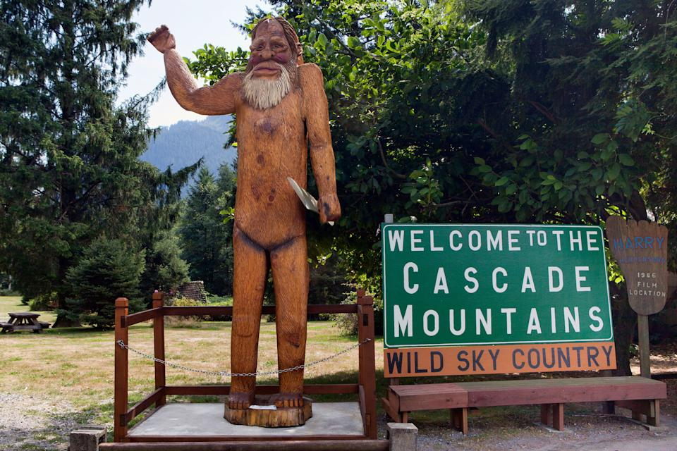 "The Evergreen State racked up the most ""credible"" Bigfoot sightings at 537 and is the setting of both <em>Harry and the Hendersons</em> and the Sasquatch Music Festival."
