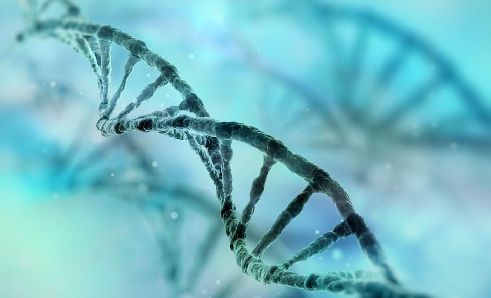 """<p>The reason your diet may not be working may just be hidden in your DNA.</p><p>""""There are so many complicated factors that influences someone's natural weight range, and the body works hard to defend a certain set point. How much weight someone loses and keeps off is more influenced by biology than personal choices,"""" Strichfield says.</p><p>Most people expect immediate and lasting changes in their weight when dieting. Plan for a few bumps in the road, Strichfield says, and set a course of action that works with—not against—your body.</p><p>""""If weight loss is meant to happen in individuals, it will be easy to maintain and still have a flexible, happy life. For example, you go to bed on time to be well-rested for your morning workout. You enjoy balanced eating, but don't obsess over going out for pizza. Our species is naturally diverse in size, and there are no good studies that prove how we all can lose weight and keep it off. You can't always control your weight, but you can always control your choices,"""" she says.</p>"""