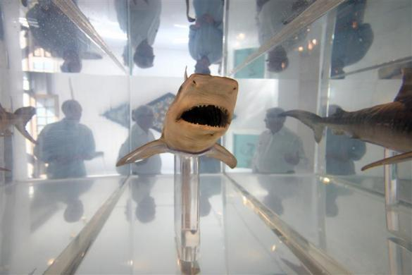 "Visitors to the Hilario Galguera gallery in Mexico City contemplate a piece by British artist Damien Hirst titled ""The wrath of God"" consisting of a shark in formaldehyde February 23, 2006."