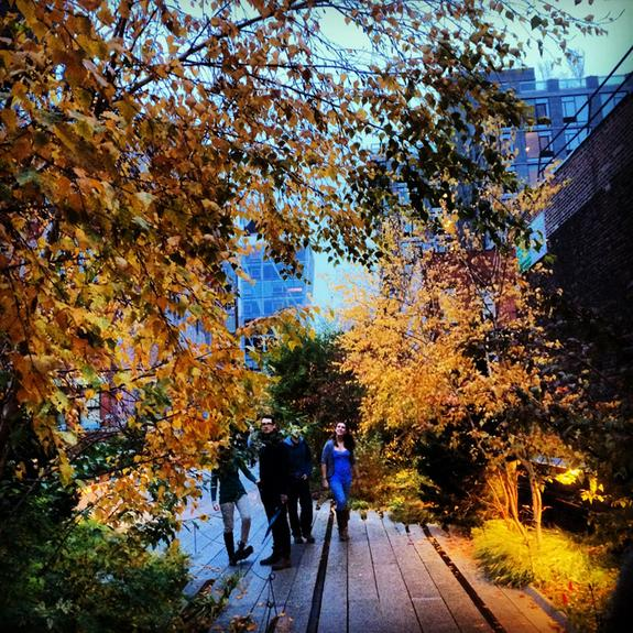 Will a future Manhattan continue to embrace innovative structures like the city's High Line, which integrates nature with the city streetscape while encouraging pedestrian transit? Mannahatta 2409 enables students, designers and urban planners