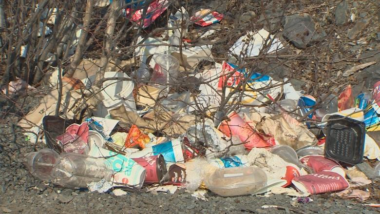 Councillor says it's time to consider more garbage cans in HRM