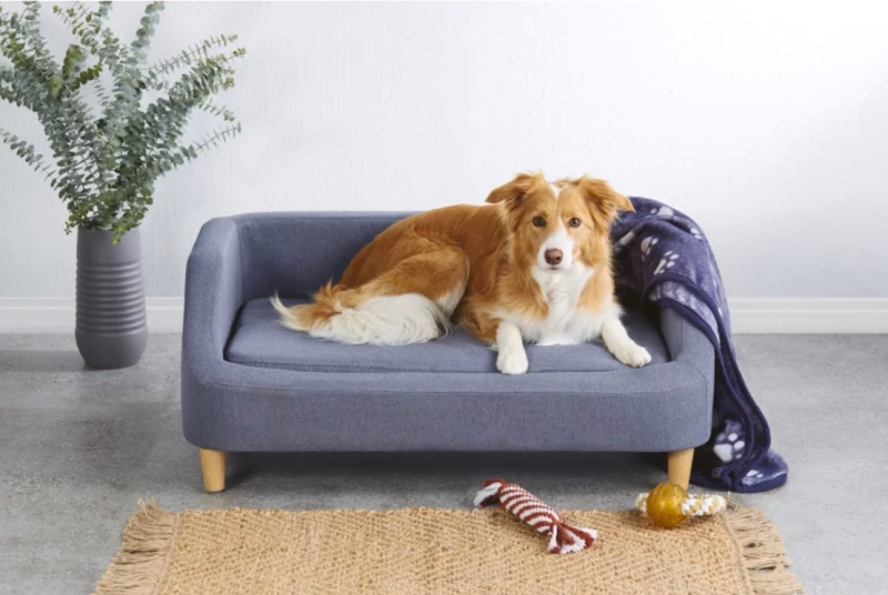 Aldi large dog bed special buy
