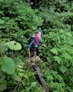 The team say they received no help from the authorities when they started, and were accused of making up stories of deforestation