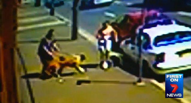 Mr Nissen's dogs started to scuffle with Mulligan's smaller dog in Alexandria, Sydney. Photo: 7 News