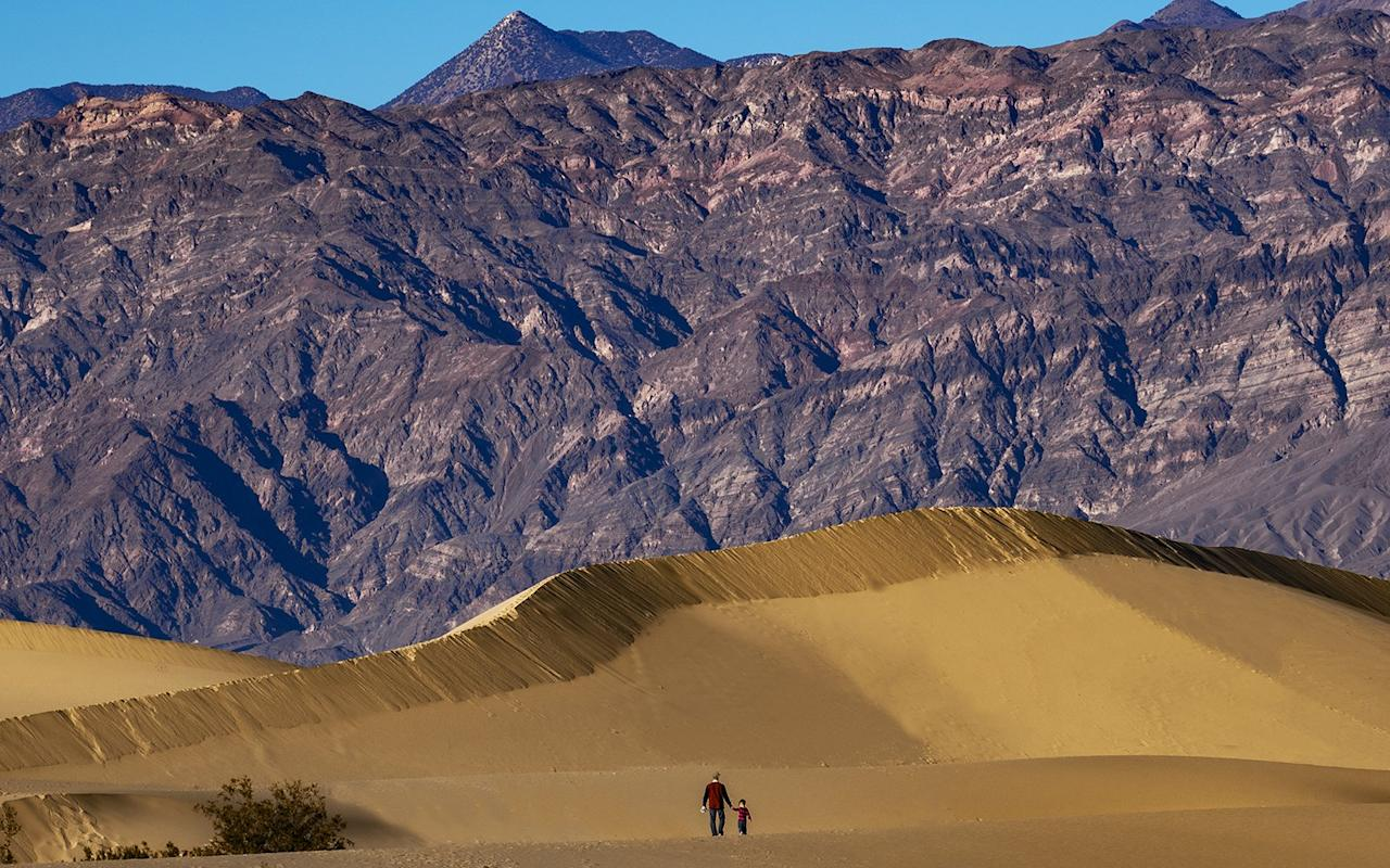 """<p>The <a href=""""https://www.nps.gov/deva/learn/nature/sand-dunes.htm"""" target=""""_blank"""">Mesquite Flat Sand Dunes</a> are the easiest to visit within <a href=""""https://www.travelandleisure.com/slideshows/death-valley-wildflower-super-bloom"""" target=""""_blank"""">Death Valley National Park</a>, which straddles both California and Nevada.</p> <p>Here, you'll find three different types of dunes that range from star-shaped to linear and crescent-shaped. There are also mesquite trees where you'll find an array of wildlife.</p> <p>""""There's these magnificent expansive dune fields, some of which go 100 feet tall that you can walk into, all while being surrounded by huge mountains that give off hues of purples alongside the golden dunes and a bright blue sky…it's just an amazing and surreal experience to be able to see that,"""" Will said.</p>"""
