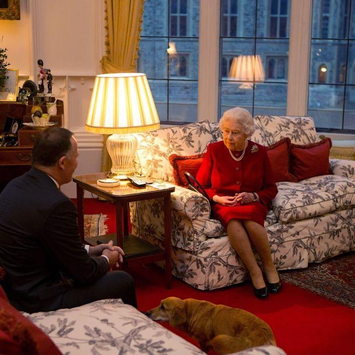 "<p>Another <em>Telegraph</em> article reported that the Queen put an end to her <a href=""https://www.telegraph.co.uk/news/uknews/theroyalfamily/11738382/Queen-stops-breeding-corgis-as-she-doesnt-want-to-leave-any-behind.html"" rel=""nofollow noopener"" target=""_blank"" data-ylk=""slk:corgi breeding practice"" class=""link rapid-noclick-resp"">corgi breeding practice</a> in 2015. At the time, she was 89 years old and feared that any new dogs born would outlive her. She couldn't bear to leave any of her precious pups behind, so she ceased breeding altogether.</p>"