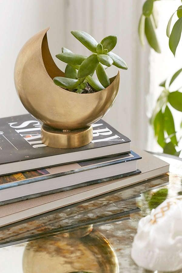 <p>Buy a succulent to put in this <span>Urban Outfitters Half Moon Planter</span> ($14) - it will be a thoughtful pairing. </p>