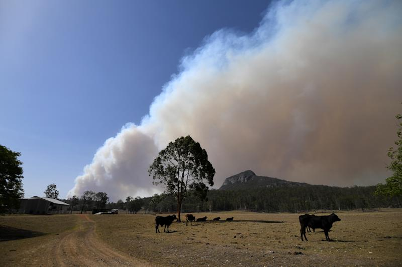 Smoke from an out-of-control bushfire is seen near Clumber, Queensland, Friday, November 8, 2019. Extreme fire warnings are in place for parts of south east Queensland with high temperatures and strong winds. (AAP Image/Dan Peled) NO ARCHIVING