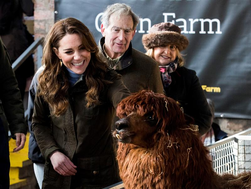 Britain's Catherine, Duchess of Cambridge (L) reacts as she strokes an alpaca during her visit to Ark Open Farm near Belfast on February 12, 2020, as part of her tour of the UK to promote her landmark survey on the early years, '5 Big Questions on the Under-Fives'. (Photo by Liam McBurney / POOL / AFP) (Photo by LIAM MCBURNEY/POOL/AFP via Getty Images)