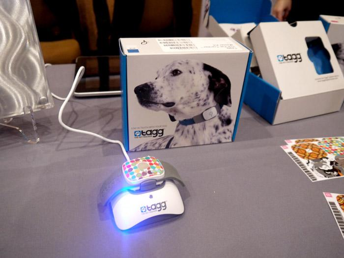 The Tagg tracker is a GPS device that attaches to Fido's collar. You program the dog's safety zone—let's say your backyard¬—and if he leaves that area you receive an email or text message alert, then track him down via GPS. About $100 plus $8 per month subscription. (Photo by Scott Ard)