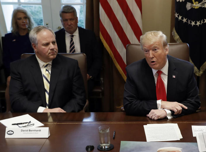 FILE - In this Jan. 2, 2019, file photo, President Donald Trump speaks during a cabinet meeting at the White House, Wednesday, Jan. 2, 2019, in Washington, as Acting Interior Secretary David Bernhardt listens. Trump says he's nominating Bernhardt, a Washington veteran with lobbying ties to U.S. energy companies, to lead the Interior Department. (AP Photo/Evan Vucci, File)