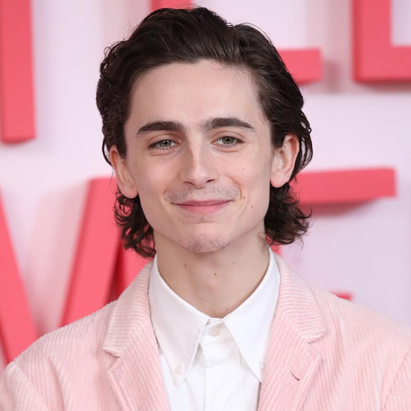Timothée Chalamet Will Play Bob Dylan in an Upcoming Biopic, and I'm So Ready to Hear Him Sing