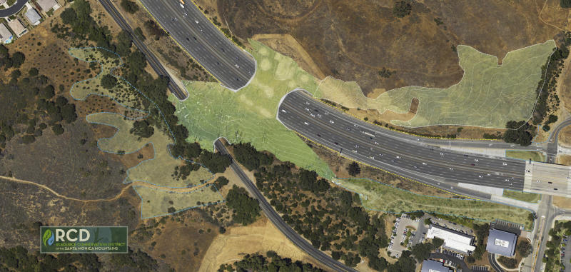 This undated artist's rendering provided by the Resource Conservation District of the Santa Monica Mountains shows a planned wildlife crossing over U.S. Highway 101 in Agoura Hills, Calif. Hoping to fend off the extinction of mountain lions and other species that require room to roam, transportation officials and conservationists will build a mostly privately funded wildlife crossing over the freeway. (Clark Stevens, Architect/Raymond Garcia, Illustration/RCD of the Santa Monica Mountains via AP)