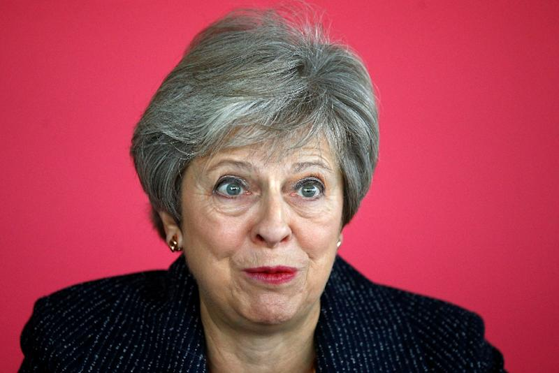 British Prime Minister Theresa May is facing a political high-wire act in trying to reach a deal that is acceptable to both the EU and lawmakers at home (AFP Photo/HENRY NICHOLLS)