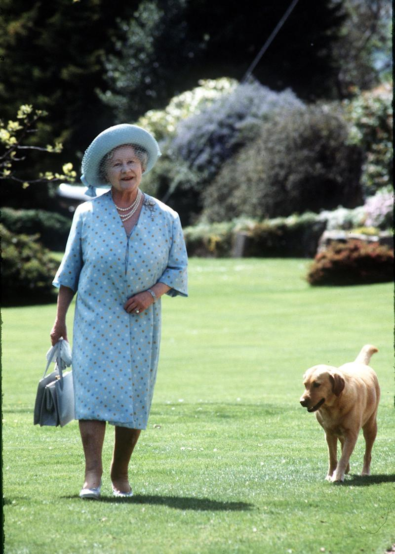 JERSEY, UNITED KINGDOM - JUNE 01: Queen Elizabeth, The Queen Mother strolls in the garden with a dog during a visit to Jersey on June 01,1984 in Jersey, United Kingdom (Photo by Anwar Hussein/Getty Images)