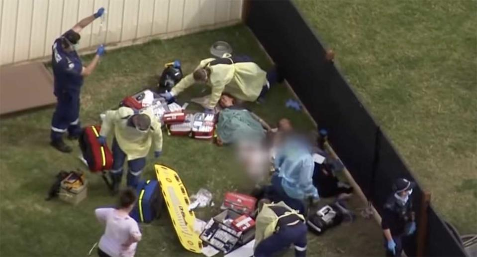 Paramedics treat two people after a dog attack in Pheasants Nest, NSW.