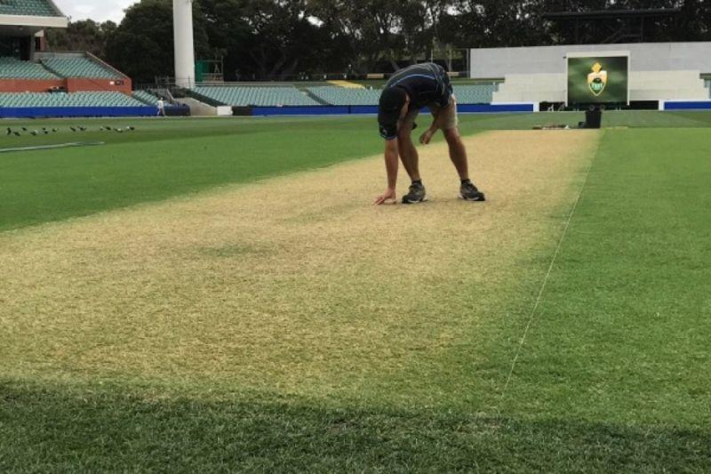 Adelaide Oval curator Damien Hough inspecting the wicket