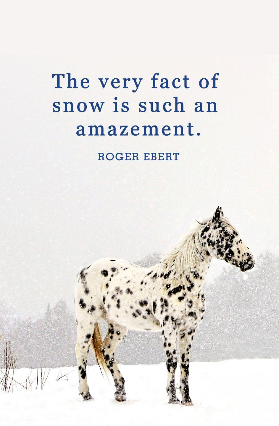 "<p>""The very fact of snow is such an amazement.""</p>"