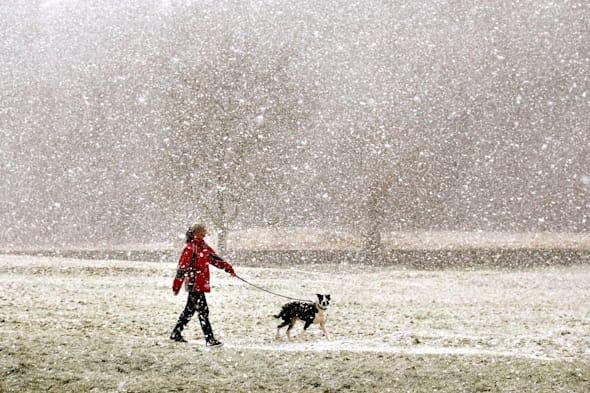 Arctic winds will make it feel like -13C today as six inches of snow sweeps in