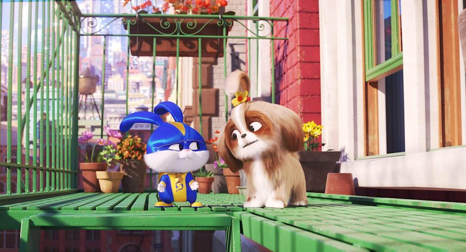 """<p><strong>Netflix's Description:</strong> """"On a farm outside New York, Max aims to boost his confidence while in the city, Snowball attempts to rescue a tiger cub and Gidget pretends to be a cat.""""</p> <p><a href=""""https://www.netflix.com/title/81044813"""" class=""""link rapid-noclick-resp"""" rel=""""nofollow noopener"""" target=""""_blank"""" data-ylk=""""slk:Stream The Secret Life of Pets 2 on Netflix!"""">Stream <strong>The Secret Life of Pets 2</strong> on Netflix!</a></p>"""