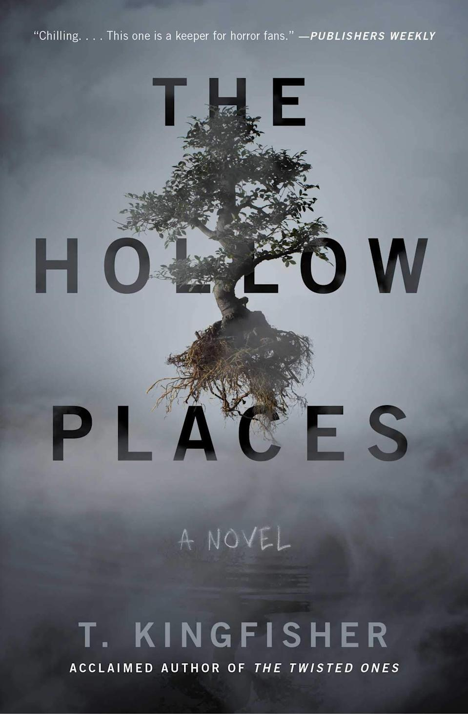 The Hollow Places book cover