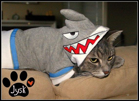 """<div class=""""caption-credit""""> Photo by: Etsy</div><div class=""""caption-title"""">3. Cat Shark</div>We can't leave the cats out you guys. <br> <a rel=""""nofollow"""" href=""""http://blogs.babble.com/pets/2012/08/14/does-your-pet-love-shark-week-too-6-shark-costumes-for-your-dog-or-cat/#cat-shark"""" target=""""""""><i>Get it from BuyCoolCrap, $35.00</i></a>"""