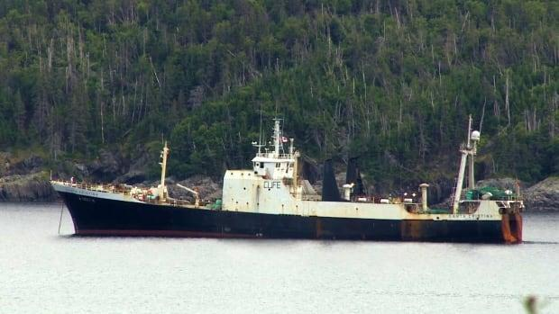 Newfoundland and Labrador is reporting no new cases of COVID-19 on Tuesday.  (Chelsea Jacobs/CBC - image credit)