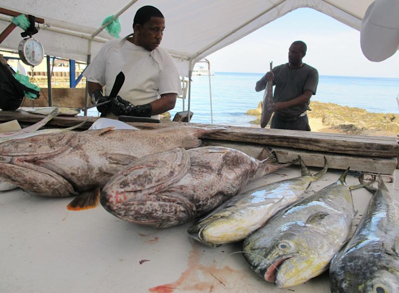 In this Aug. 3, 2012 photo, fishermen clean a fresh catch of fish along a beach in downtown George Town in the Cayman Islands. The Cayman Islands have lost some of their allure by abruptly proposing what amounts to an income tax on expatriate workers who have helped build the territory into one of the most famous or, for some people, notorious offshore banking centers that have tax advantages for foreign investment operations. (AP Photo/David McFadden)
