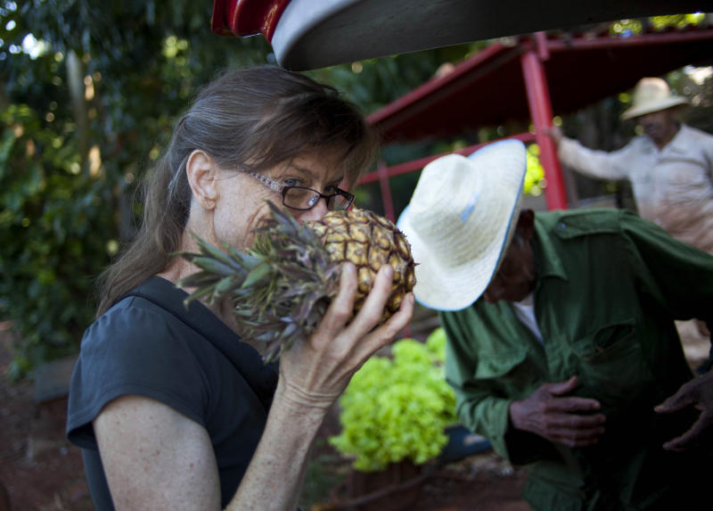 "In this Dec. 8, 2012 photo, U.S. chef Kelsie Kerr smells a pineapple while shopping for fruit and vegetables at a farm in Havana, Cuba. Kerr traveled to Cuba with the California based ""Planting Seeds"" delegation that held give-and-take seminars with chefs and culinary students about slow food. Cuba has a longstanding culture of organic farming by necessity. During the ""Special Period"" of the 1990s, many private urban plots popped up in Havana amid austerity after the collapse of the Soviet Union. Unlike in the United States, pesticide-free is largely the rule here rather than the exception, mostly due to a lack of supply. (AP Photo/Ramon Espinosa)"