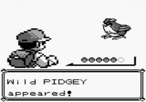Pokemon video game pidgey