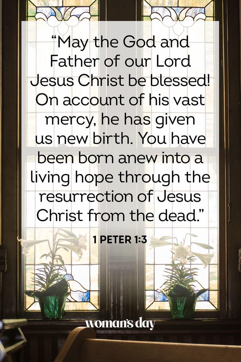 "<p>""May the God and Father of our Lord Jesus Christ be blessed! On account of his vast mercy, he has given us new birth. You have been born anew into a living hope through the resurrection of Jesus Christ from the dead."" — 1 Peter 1:3</p>"