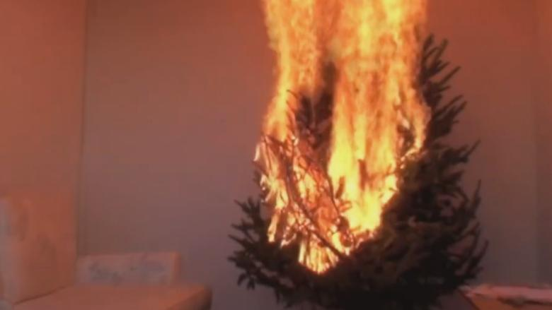 Dried out Christmas trees 'an accident waiting to happen,' Toronto fire says
